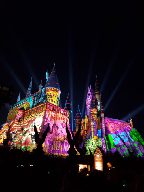 Beautiful Christmas Light Show at Hogwarts!!! The Weasley Brother's are at it again!